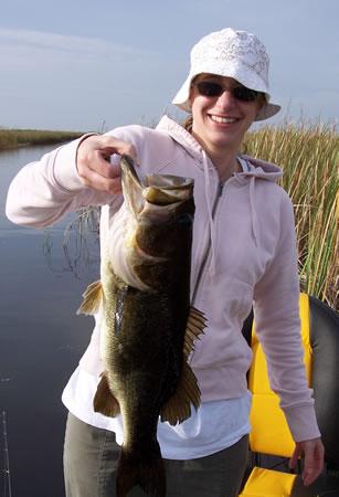 Everglades 2008 Pictures