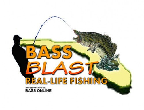 May 2014 South Florida Fishing Report