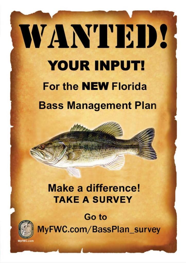 Black  Bass Management Plan proposal