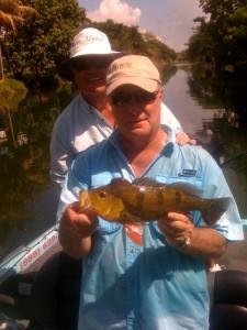 Miami Peacock Bass Fishing