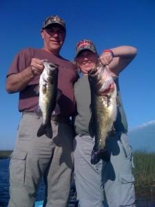 Florida Everglades Guide