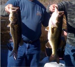 Florida Everglades bass fishing