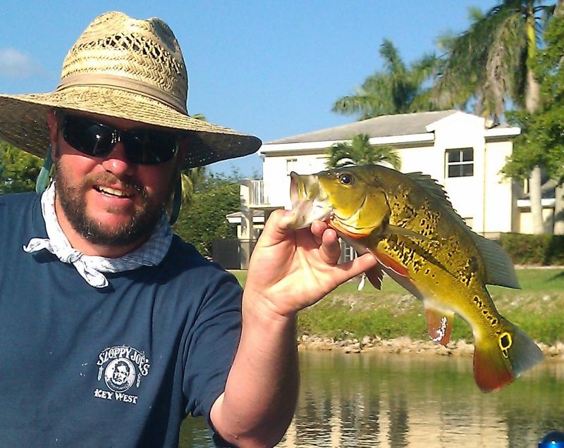 Peacock bass fishing guide in miami florida bass fishing for Florida bass fishing guides