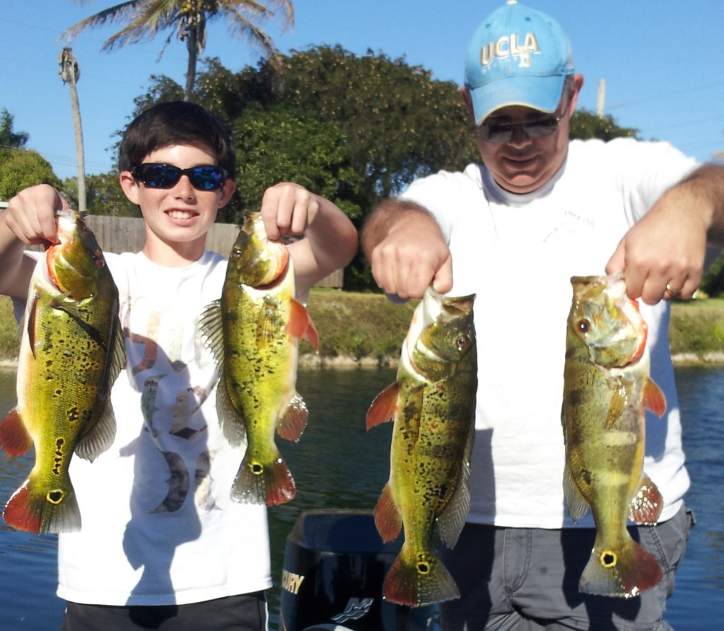 Great day peacock bass fishing miami with gera peacock for Peacock bass fishing miami