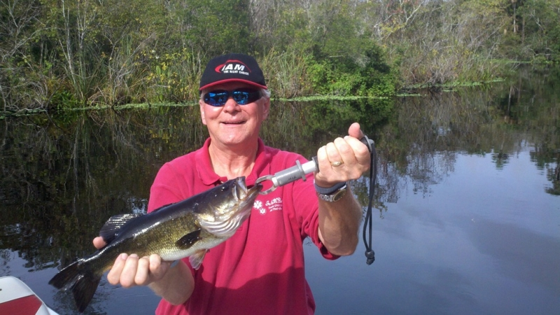 Golden gate canal system naples florida bass fishing for Florida canal fishing