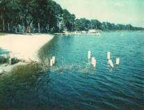 Polk County, Lake Cannon in Florida