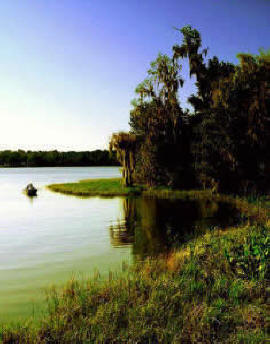 wauberg lake, Alachua County