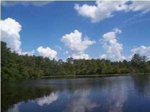 Lake Bryant