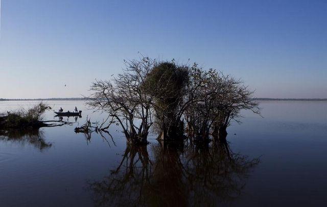 Lake trafford