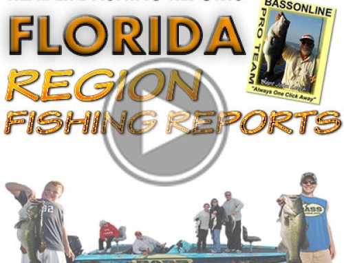 South Florida Bass Fishing Report August 2014 – Everglades & Peacock Bass