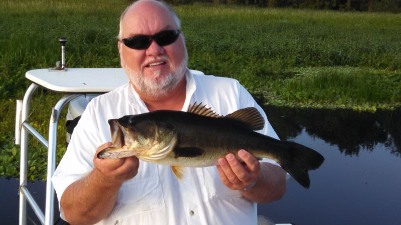 St Johns River Pictures 2011