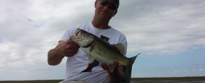 MONTER OKEECHOBEE BASS may have Escaped