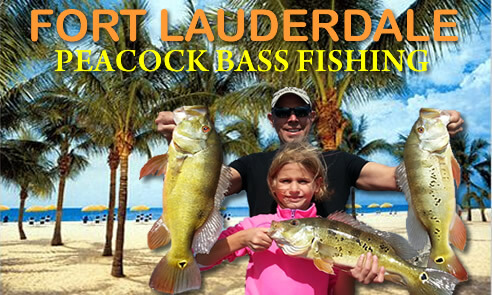 Ft lauderdale peacock bass fishing bass fishing experts for Fishing spots in fort lauderdale