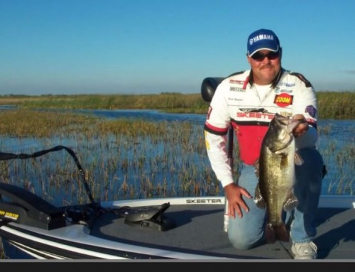 Lake Okeechobee Fishing Guide Captain Mark Shepard