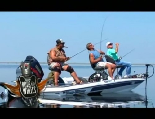 ESPN Rods and Wheels Fishing Show from Florida Everglades