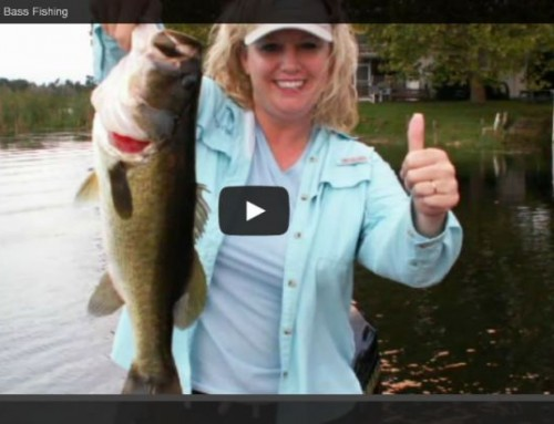 Ocala Bass Fishing – North Florida Bass Fishing