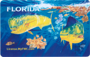 Florida fishing license freshwater non resident license for Fishing license florida