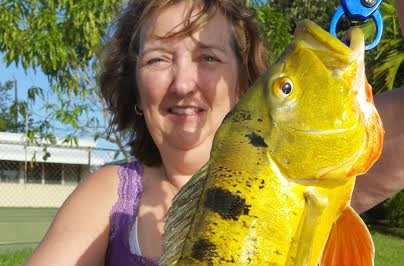 Florida Peacock bass1
