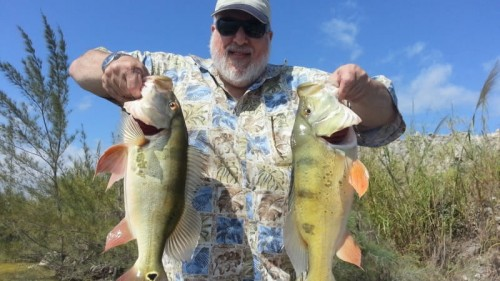 Bill McGrath Peacock Bass Fishing