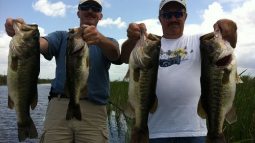 Rick Hurley Everglades Fishing