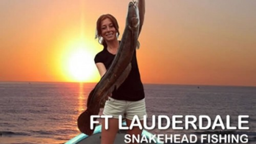 Snakehead Fishing Trips
