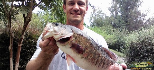 Florida Record Breaking Shoal bass Caught