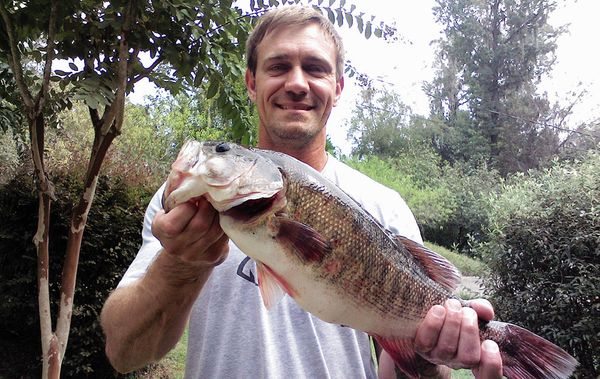 Florida Record Breaking Shoal bass Caught