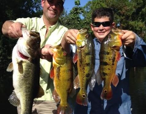 Lake Ida Peacock Bass fishing report