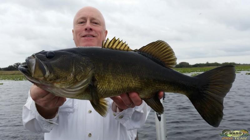 Florida reportes de pesca florida bass reportes de pesca for Best bass fishing in florida