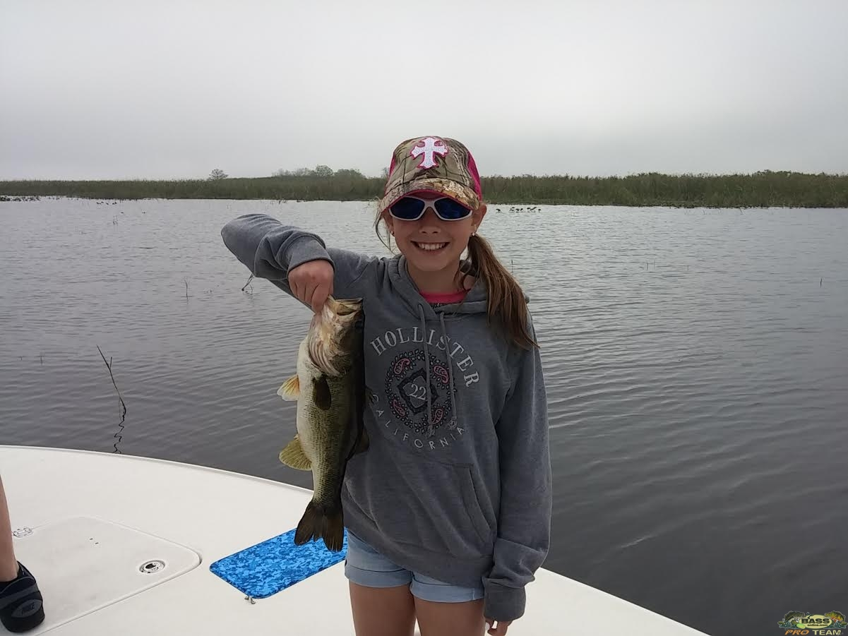 Lake okeechobee bass fishing guide capt mark rogers bass for Lake okeechobee fishing guides
