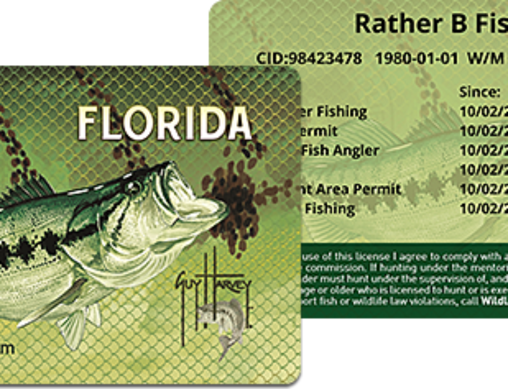 Gov. Scott Announces Free Florida Fishing Licenses