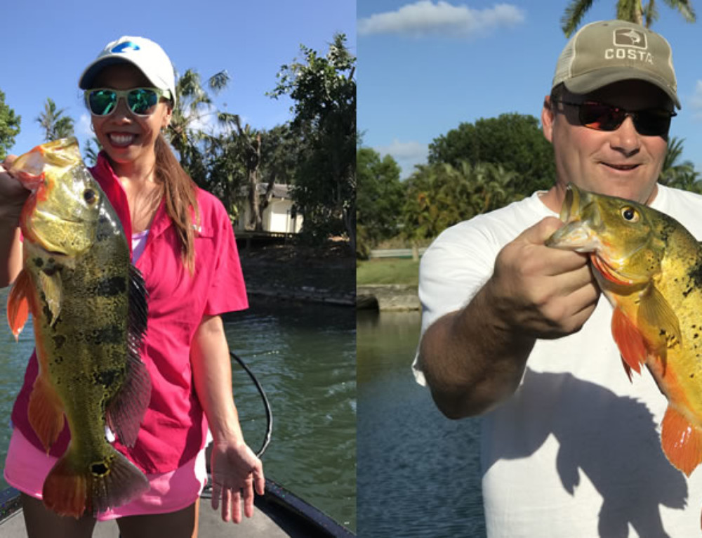 Miami Bucket List Fishing while Catching Florida Peacock Bass