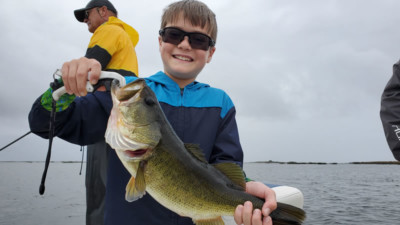 Current February Okeechobee Report 1