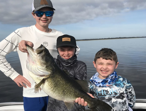 March Toho Fishing Forecast for Florida Trophy Largemouth Bass